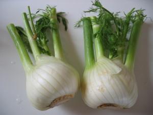 Fenouil Bulb